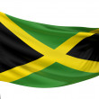 Jamaica National Flag — Stock Photo