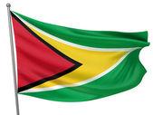 Guyana National Flag — Stock Photo