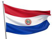 Paraguay National Flag — Stock Photo