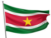 Suriname National Flag — Stock Photo
