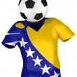 Soccer Team of Bosnia and Herzegovina — Stock Photo