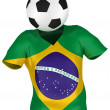 Stock Photo: Soccer Team of Brazil | All Teams