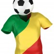 Soccer Team of Congo Republic — Stock Photo #2585845