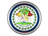 National Flag of Belize — Stock Photo