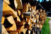 Firewood — Stock Photo