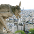 Stock Photo: Monster on Notre Dame de Paris