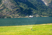 Small Ferry In Norwegian Fjord — Stock Photo