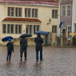 With umbrellas in Tallinn - 图库照片