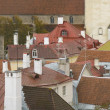 Roofs of Tallinn's old town — Stock Photo #1491816