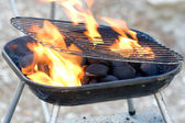 Charcoal with flame in forest — Stock Photo