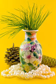 Pines branch in vase — Stock Photo