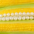 Stock Photo: Corn & pearls