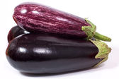 Aubergine Zebra — Stock Photo