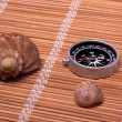 Shellfishes and compass — Stock Photo #2098736