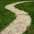 Footway in garden — Stock Photo #1181986