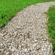 Footway in garden — Stock Photo #1183067