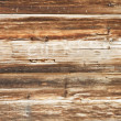 Wood plank — Stock Photo #2575661