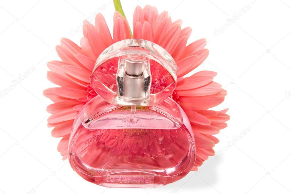 Perfumes & Cosmetics: Lancome perfumes Climate
