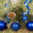 Christmas decoration assortment — Stock Photo #1030973