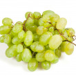 Ripe vine — Stock Photo