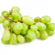 Ripe green vine — Stock Photo