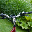Bicycle on  grass — Stock Photo
