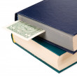 Royalty-Free Stock Photo: Two books and dollar