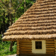 Peasant house — Stock Photo