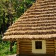 Peasant house — Stock Photo #1048488