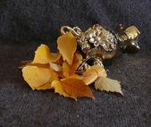 Autumn tints — Stock Photo