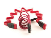 Cable SATA — Stock Photo