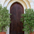 Stock Photo: Door of Emmaus Nicopolis abbey