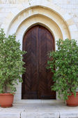 The door of Emmaus Nicopolis abbey — Stock Photo
