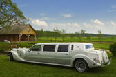 Light limousine in the meadow — Stock Photo