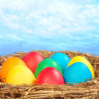 Color eggs in a golden nest — Stock Photo