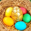 Easter eggs — Stock Photo #1019789