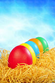 Five painted eggs in straw on a sky back — Stock Photo