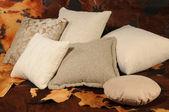 Cushions — Stock Photo