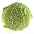 Head cabbage — Stock Photo