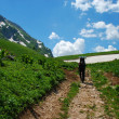 Stockfoto: Mountain way