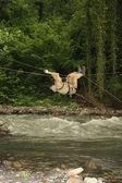 Atravessando o rio da montanha — Foto Stock