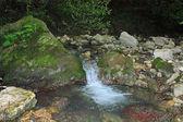 Rein sauber gebirgsbach — Stockfoto