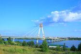 Facet most — Zdjęcie stockowe