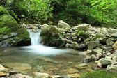 Czysto czystym górskim potoku — Zdjęcie stockowe