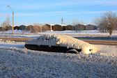 Güneşli bir gün kar yağışı sonra — Stok fotoğraf