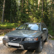 Stock Photo: 4x4 Europewagon parked on forest.