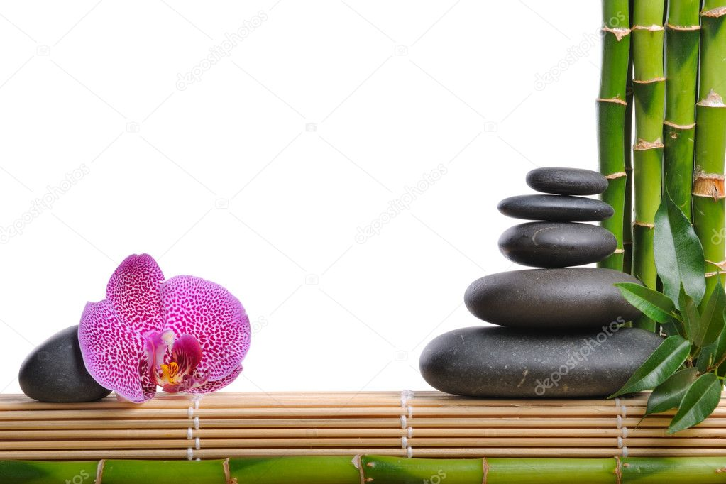 Pink orhid and stones on the white background — Stock Photo #1014474