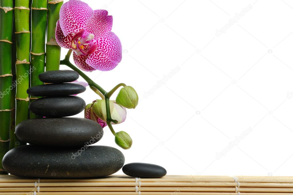 Pink orchid and stones on the white background  Foto Stock #1015168