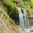 Waterfall in the forest — Stock Photo #1036353