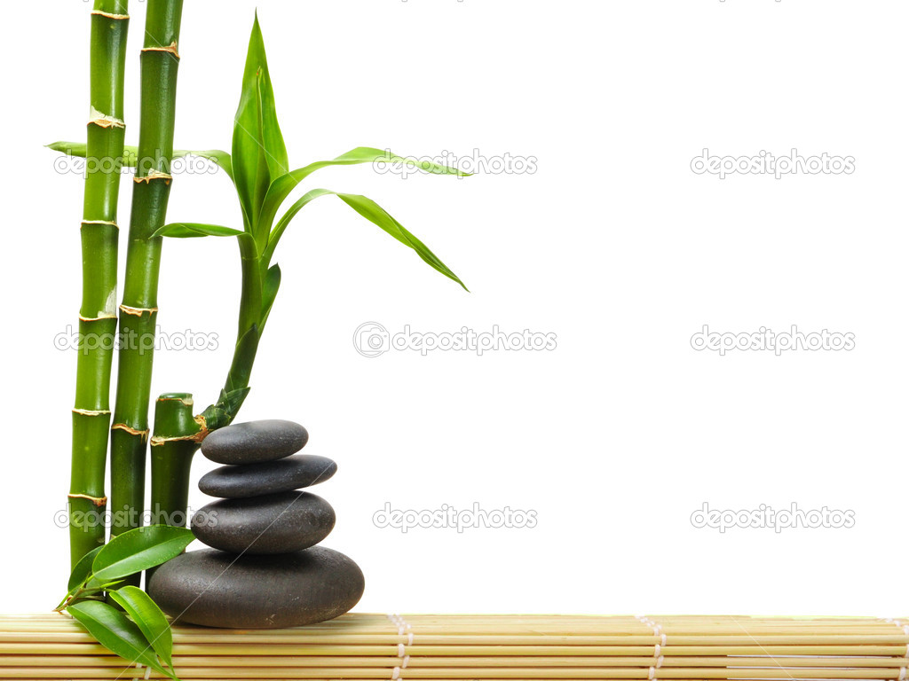 Zen stones and bamboo — Stockfoto #1046473